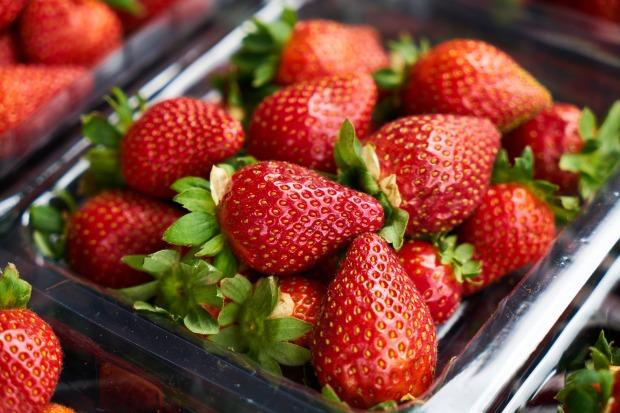 strawberry-2289499_1920.jpg