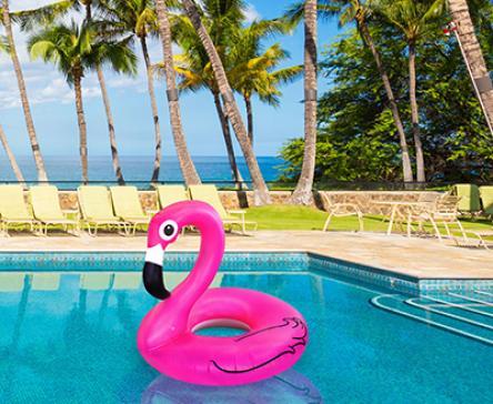 flamingó matraca